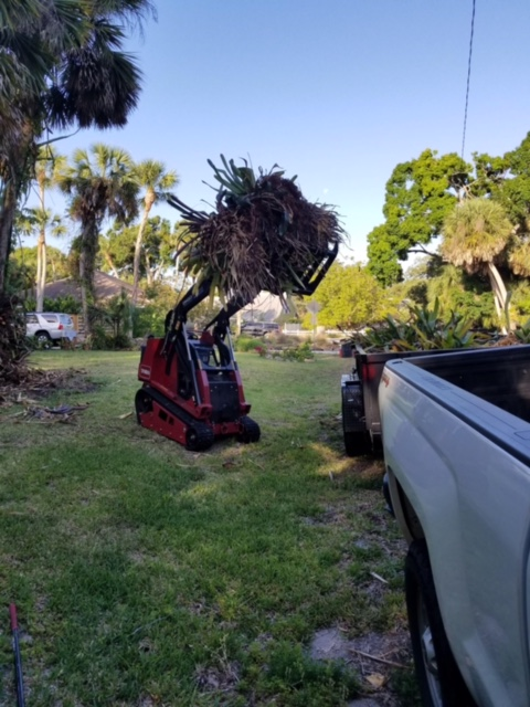 Land Clearing - Mark Douglas Lawncare Inc  - Venice FL - (941) 451-7042
